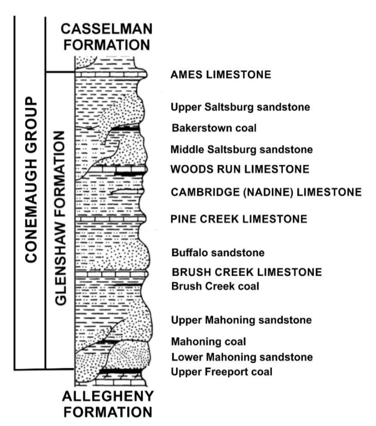 The Glenshaw Formation, Illustrated by John A. Harper.