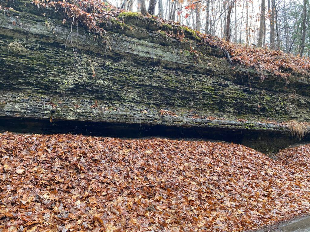 Ames Limestone in Gilpin Township, Pennsylvania