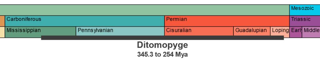 Temporal range of the Late Pennsylvanian Trilobite genus Ditomopyge