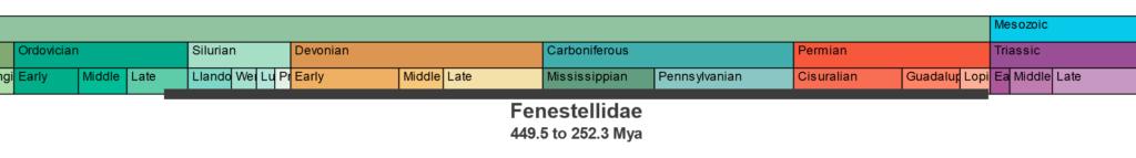 Fenestellidae Temporal Range 449.5 to 252.3 Million years ago