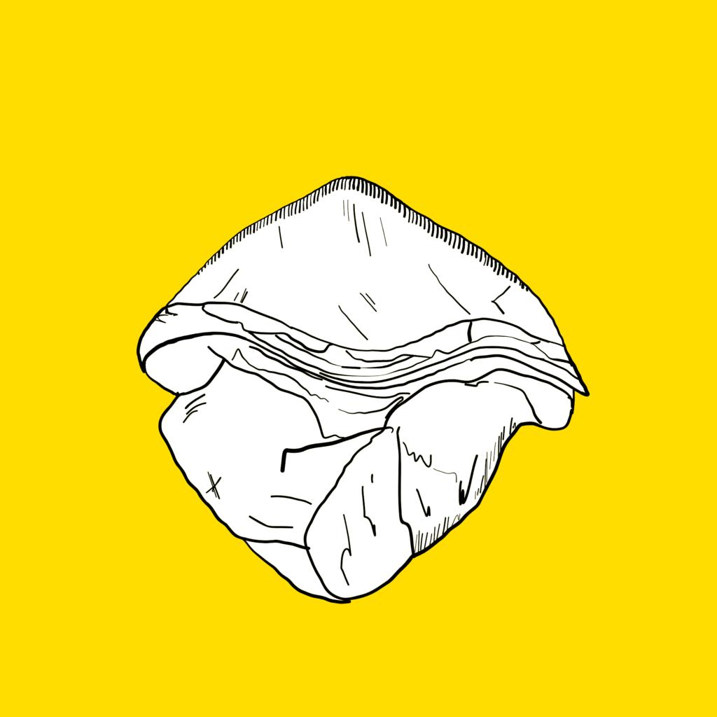 Petalodus