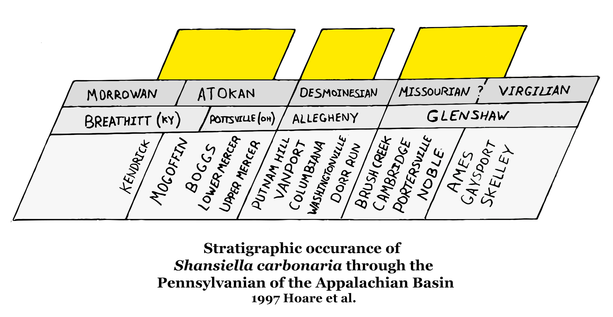 Stratigraphic occurance of S. carbonaria through the Pennsylvanian of the Appalachian Basin - 1997 Hoare et al.
